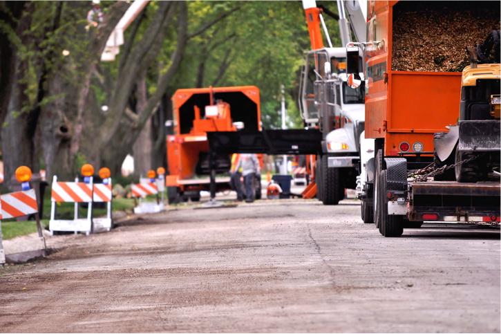 emergency tree service in orange county