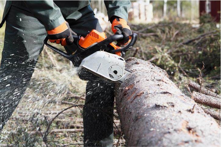 shrub removal orange county